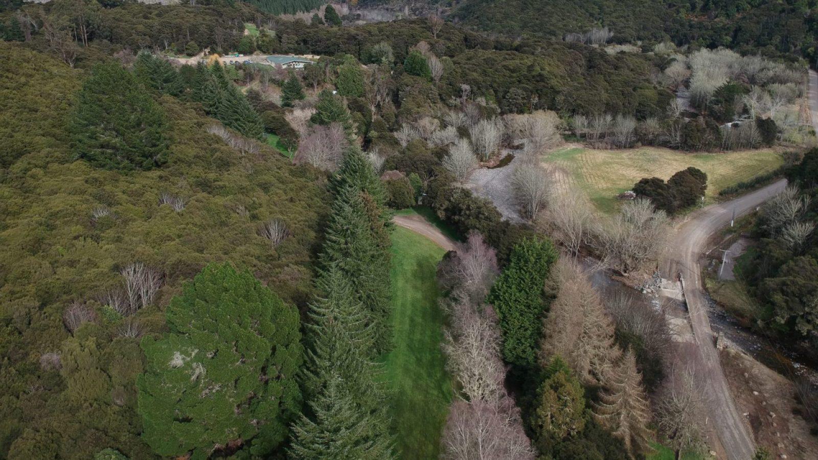 Disc Golf Dunedin